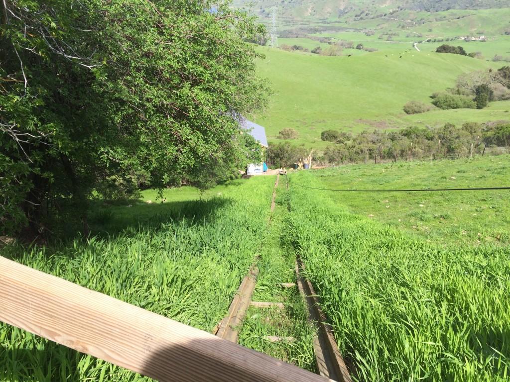 railroad barley